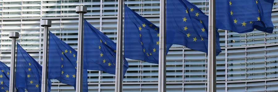 ECJ rules EU-US Privacy Shield invalid